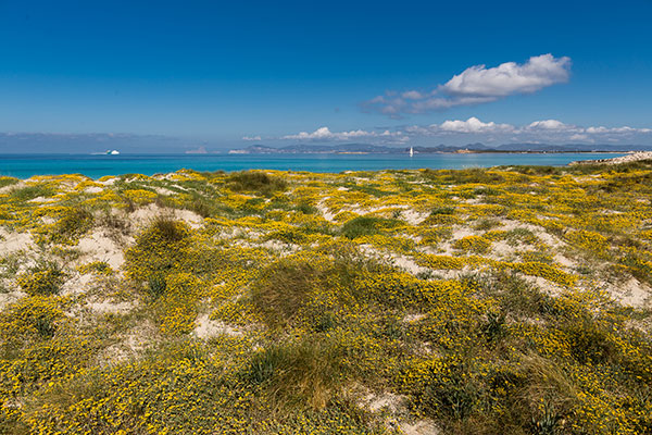 Routes throught Formentera