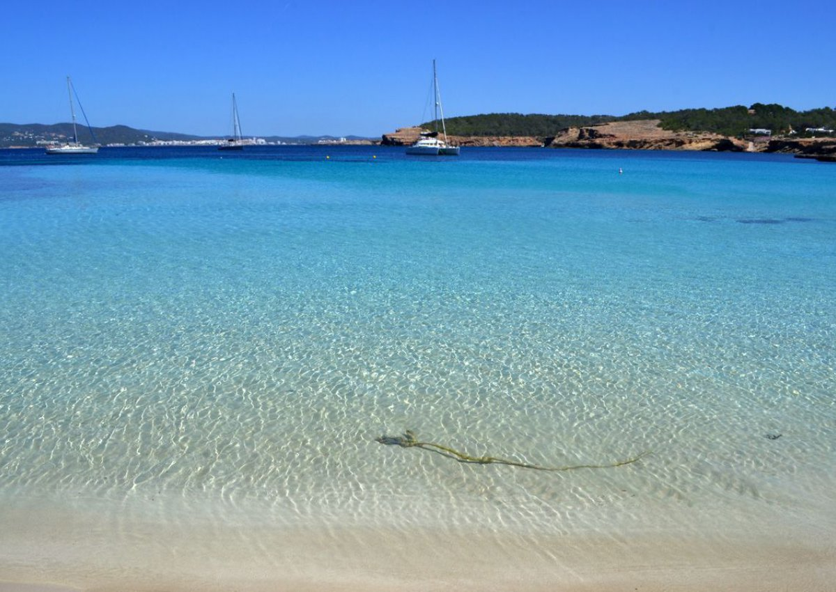 These are the best beaches for dropping anchor around Ibiza